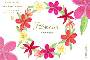 Plumeria Tropical watercolor flowers