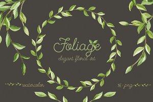 Foliage. Elegant floral set
