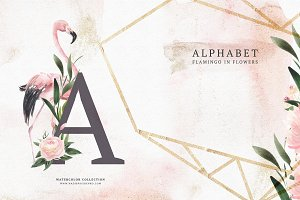 Alphabet Flowers & Flamingo