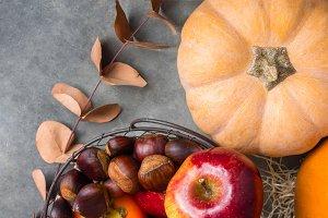 Pumpkin apple chestnuts Thanksgiving