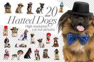 20 Hatted Dogs - Cut-out Pictures