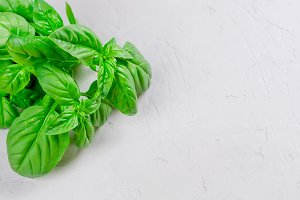 Bunch of fresh green basil on a  woo