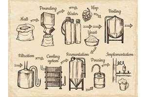 Beer production steps. Hand drawn