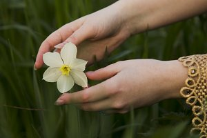 Flower and hand.