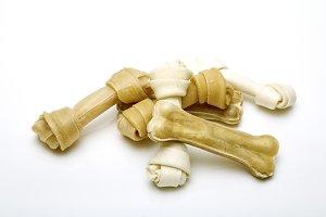 Dog bone white background