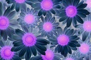 Pandora flowers )) 2