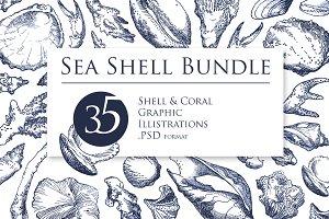 Sea Shell Bundle