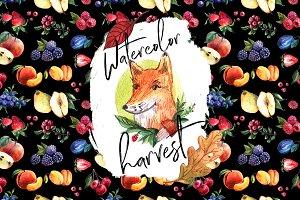 Watercolor harvest