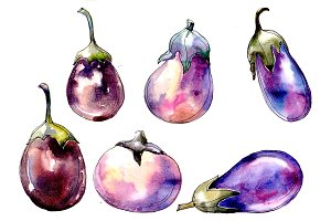 Watercolor purple eggplant vegetable