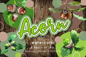 Acorn plant PNG watercolor set