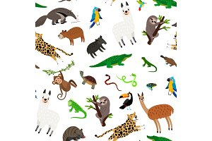 South america animals pattern