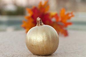Golden Pumpkin  With Orange Leaves