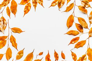 Gold autumn leaves frame on white
