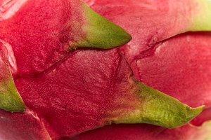 Dragon fruit skin close up, macro
