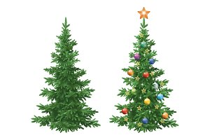 Christmas spruce fir trees with