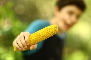 teenager boy eating boiled corn cob