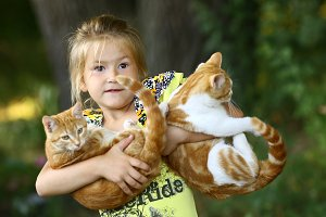 little girl hug cat close up photo