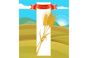 Wheat Cereal Poster and Nature