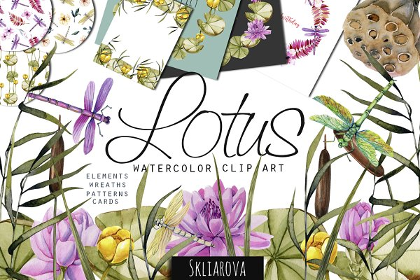 Lotus. Watercolor collection.