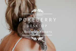 POKEBERRY Creamy and Moody LR Preset
