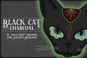 Black Cat Charcoal Brushes