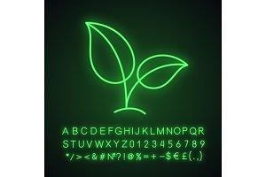 Eco neon light icon