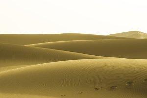 Yellow dunes