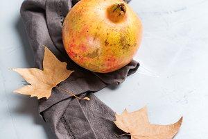 Harvest fall autumn concept. Ripe ju