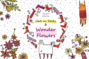 Cats in Socks & Wonder Flowers