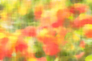 Impressionist poppies field