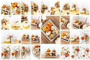 Fall Photo Bundle 30 photos