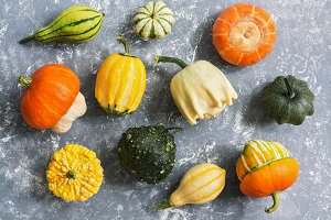 A variety of colorful pumpkins on a