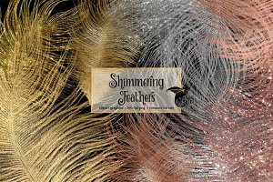 Shimmering Feathers Clipart