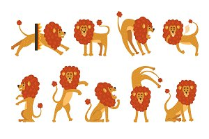 Set of funny African lion in