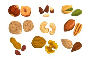 Flat vector icons of nuts and seeds