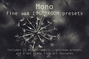 Mono Fine Art Lightroom Presets
