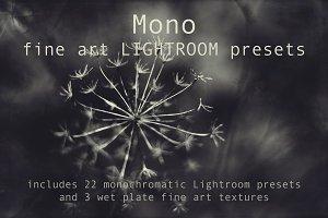 Mono Fine Art Lightroom Presets