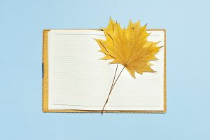 Open blank notebook, yellow leaf