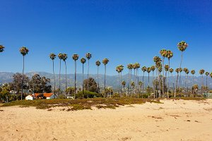 Sand beach with palms in Santa Barba