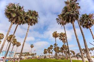 Venice beach leasure