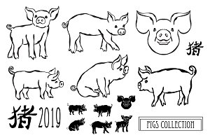 Hand Drawn Pigs and Patterns