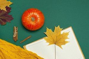 Opened notebook, orange pumpkin