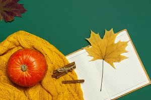 Opened notebook, orange pumpkin