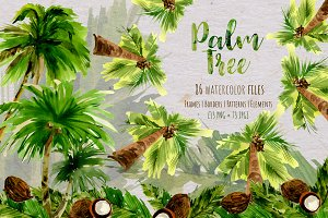 Palm tree PNG watercolor set