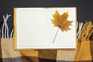Opened notebook, yellow autumn leaf