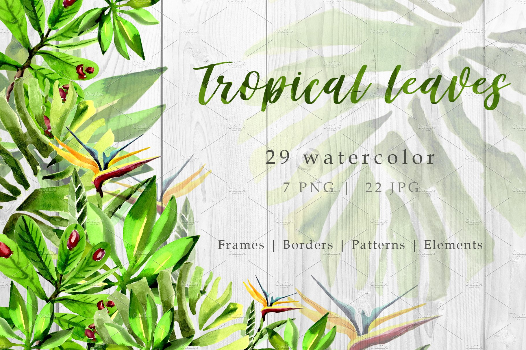 Tropical Leaves Png Watercolor Set Pre Designed Photoshop Graphics Creative Market Blue, red, and pink swiss cheese leaves print textile. tropical leaves png watercolor set