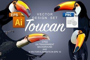 Toucan Vector Design Set