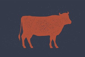 Beef, cow. Poster for Butchery meat
