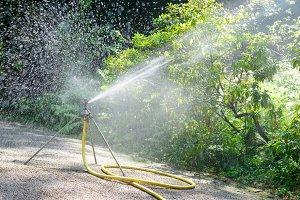 sprinkler watering the plants in par