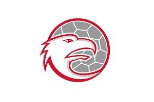 European Handball Eagle Mascot